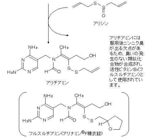 アリシンによるチアミン(ビタミンB1)の活性化